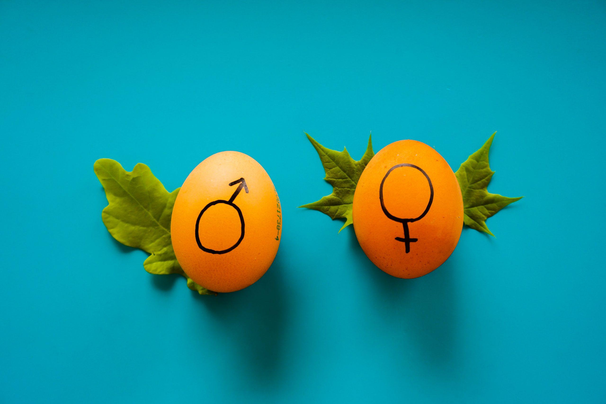 Gendern in der PR